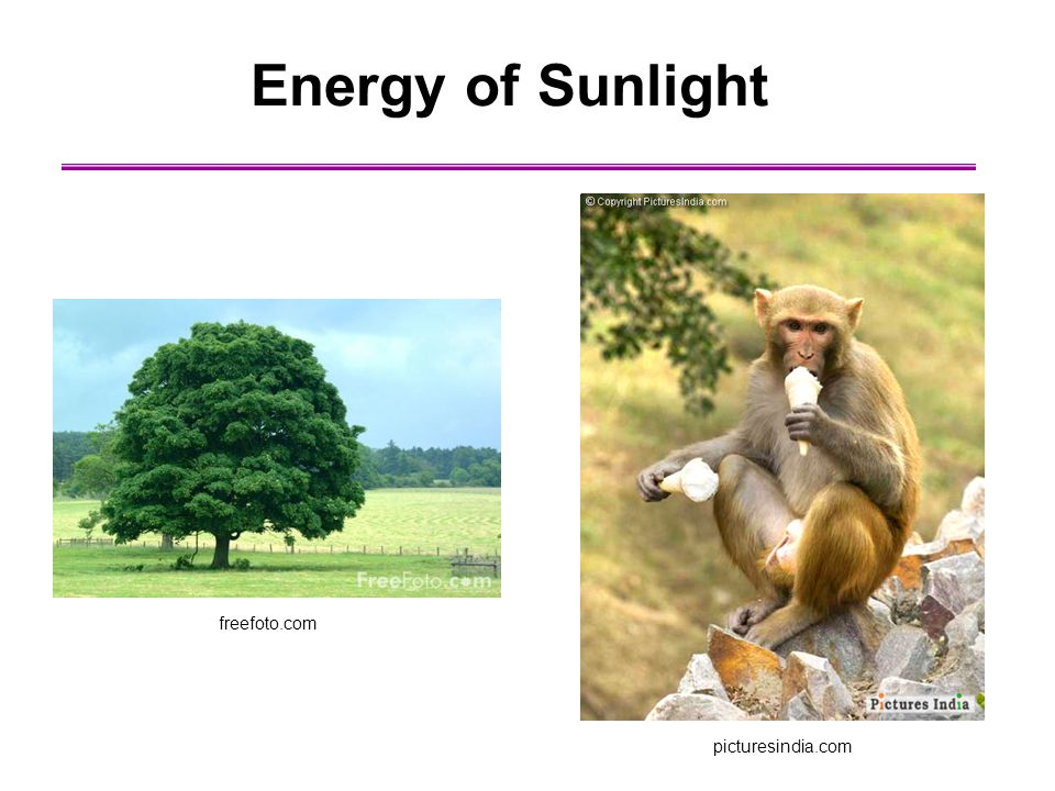Energy of Sunlight