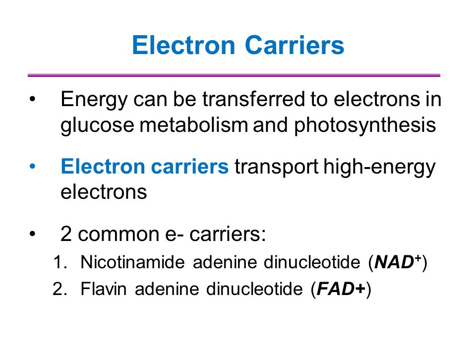 Electron Carriers Energy can be transferred to electrons in glucose metabolism and photosynthesis. Electron carriers transport high-energy electrons.
