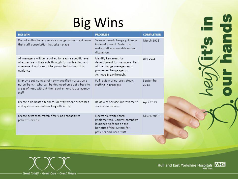 Big Wins BIG WIN PROGRESS COMPLETION