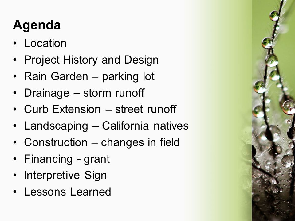 Agenda Location Project History and Design Rain Garden – parking lot