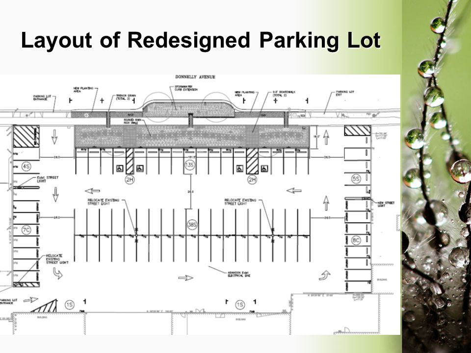 Layout of Redesigned Parking Lot
