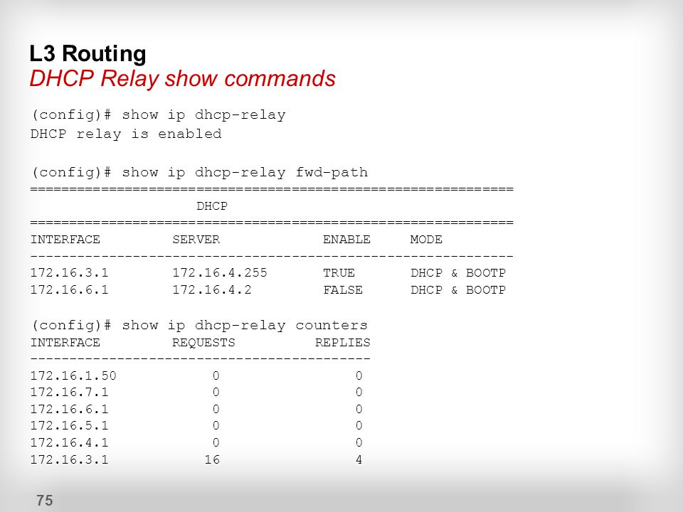 L3 Routing DHCP Relay show commands