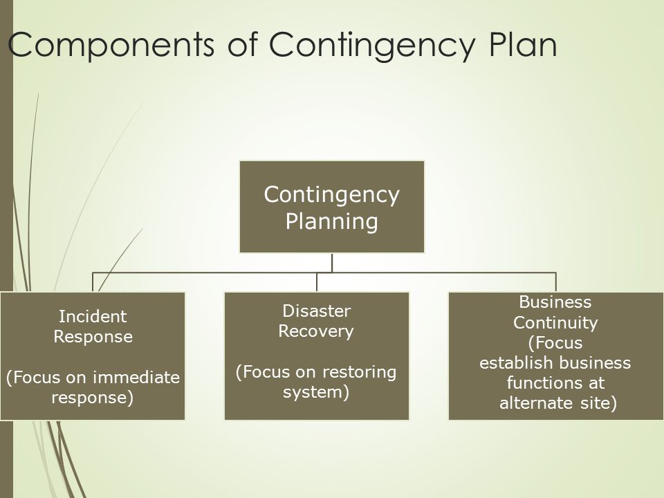 Components of Contingency Plan