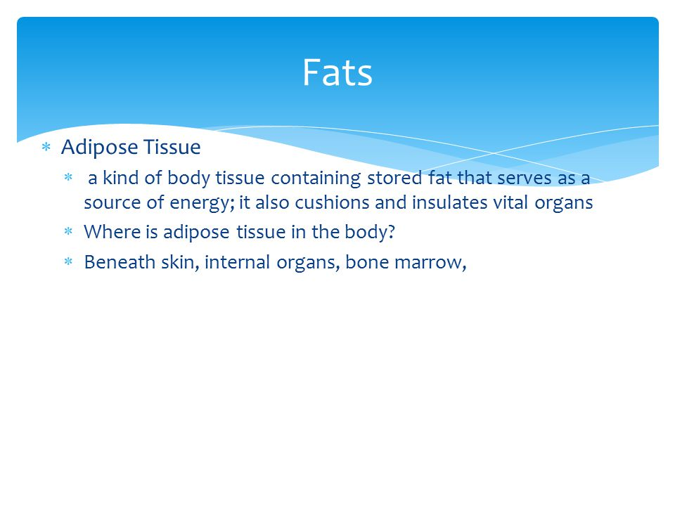 Fats Adipose Tissue. a kind of body tissue containing stored fat that serves as a source of energy; it also cushions and insulates vital organs.
