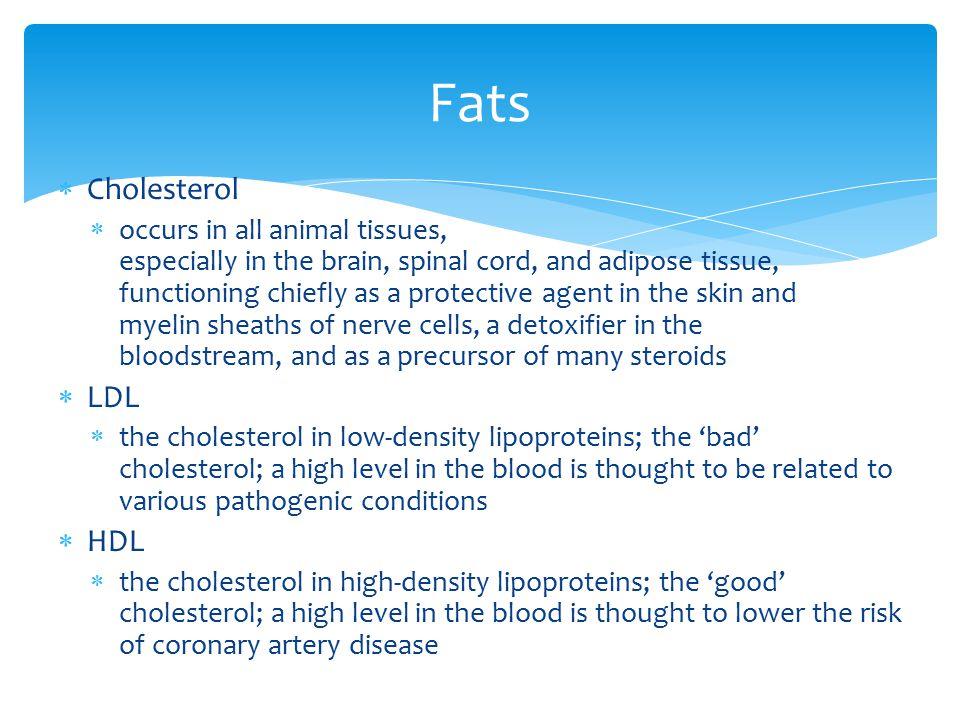 Fats Cholesterol LDL HDL