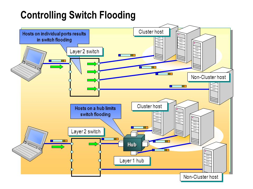 Controlling Switch Flooding