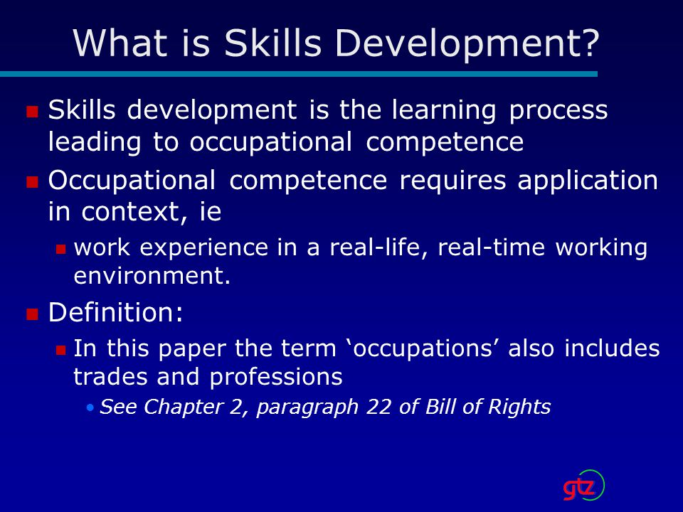 What is Skills Development