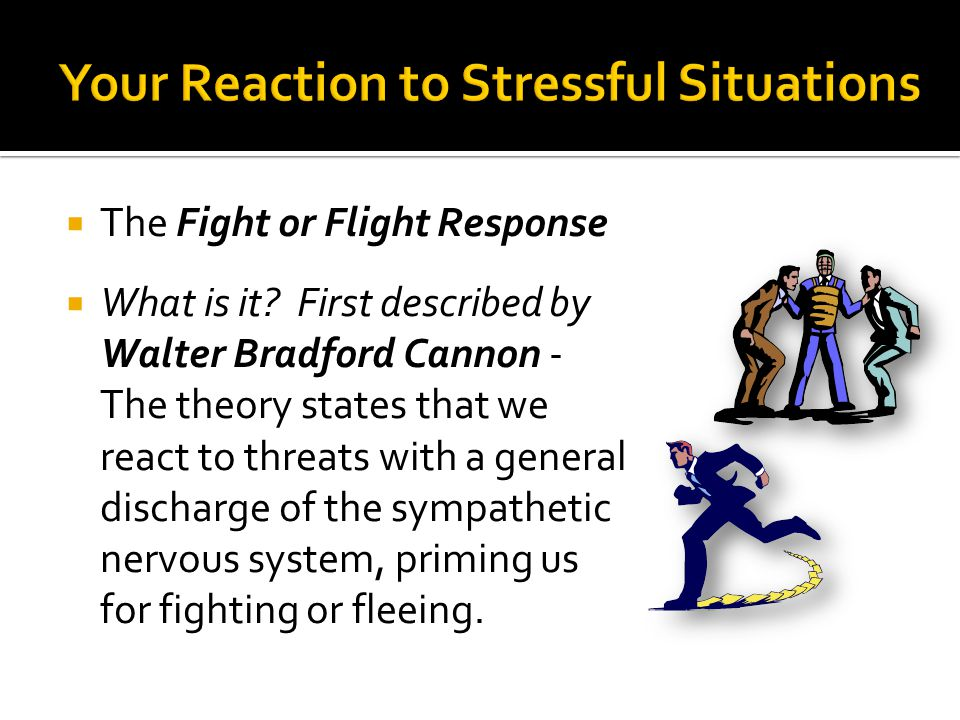 Your Reaction to Stressful Situations