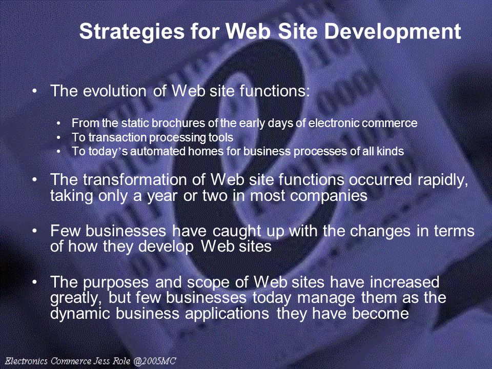 Strategies for Web Site Development
