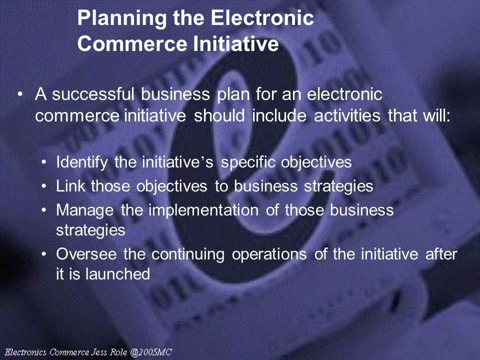 Planning the Electronic Commerce Initiative