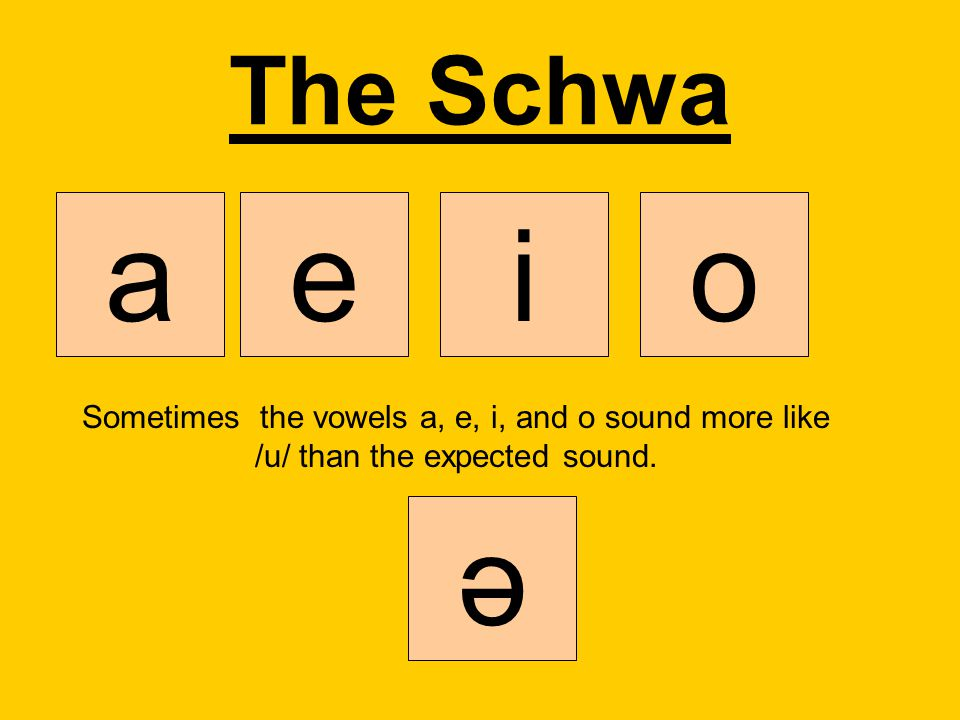 The Schwa a. e. i. o. Sometimes the vowels a, e, i, and o sound more like /u/ than the expected sound.