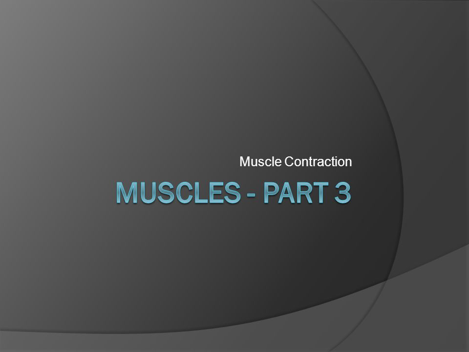 Muscle Contraction Muscles - part 3