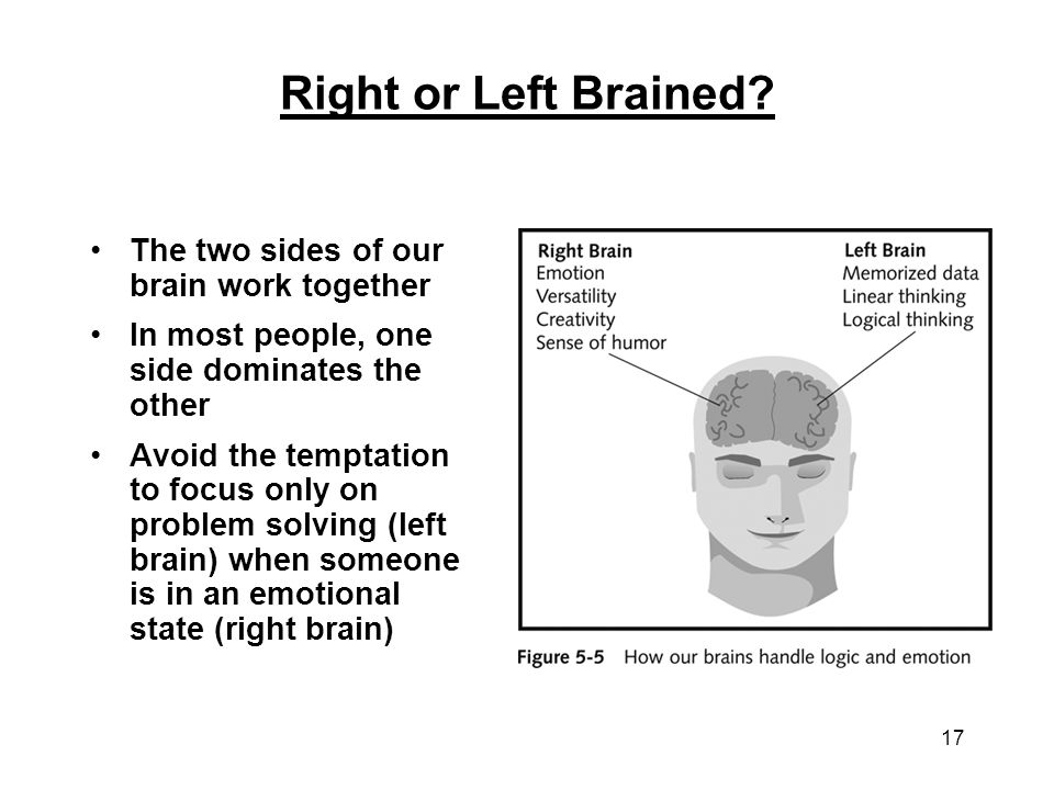 Right or Left Brained The two sides of our brain work together