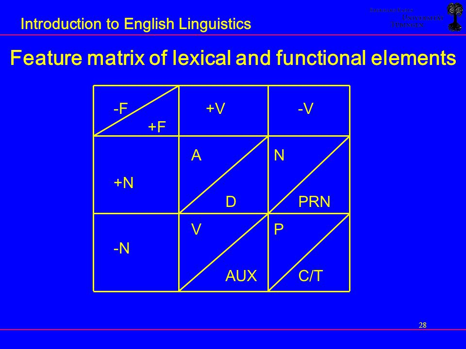 Feature matrix of lexical and functional elements