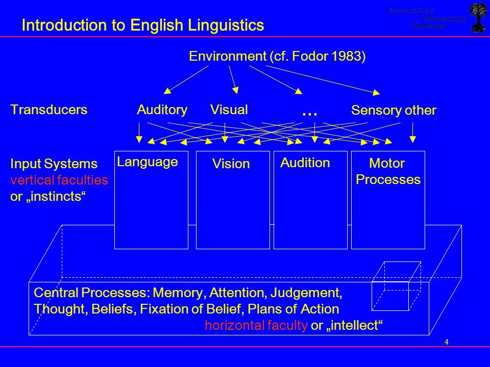 ... Introduction to English Linguistics Environment (cf. Fodor 1983)