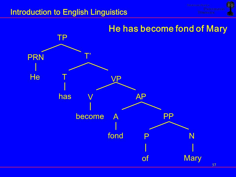 Introduction to English Linguistics