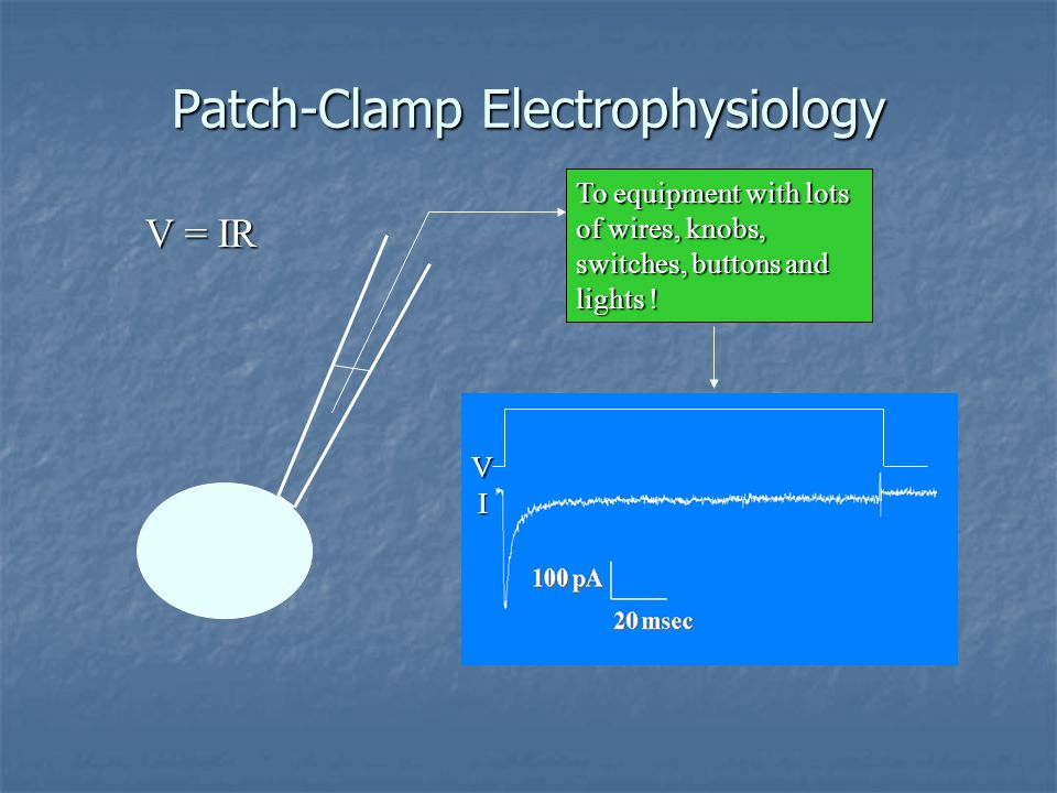 Patch-Clamp Electrophysiology