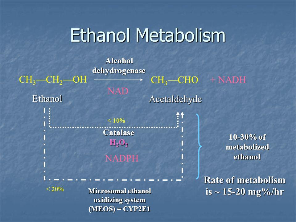 Ethanol Metabolism CH3—CH2—OH CH3—CHO + NADH NAD Ethanol Acetaldehyde