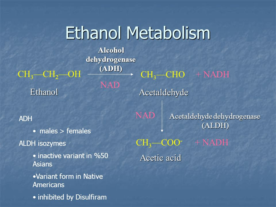 Alcohol dehydrogenase (ADH)
