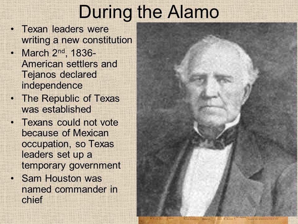 During the Alamo Texan leaders were writing a new constitution