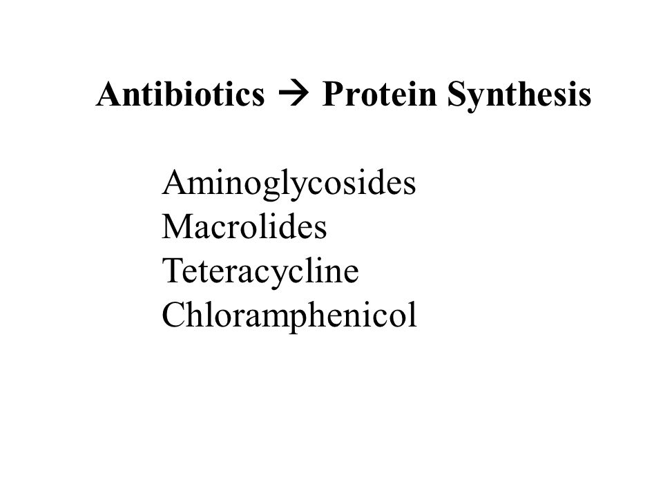 Antibiotics  Protein Synthesis