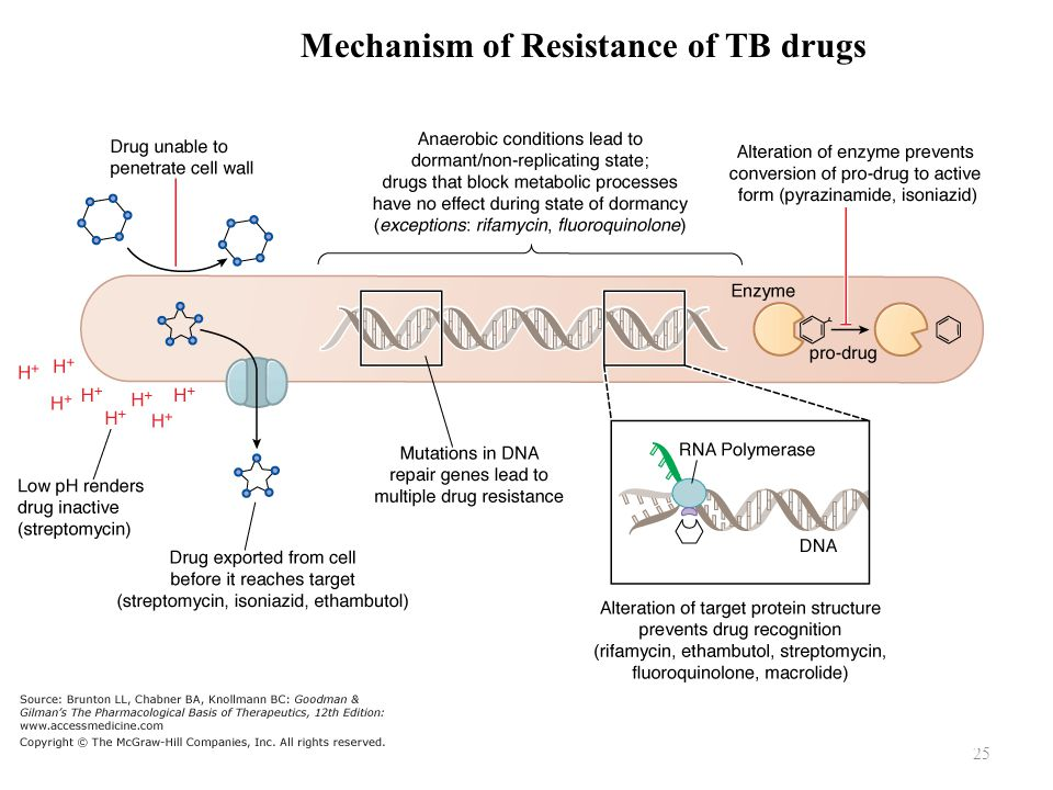 Mechanism of Resistance of TB drugs