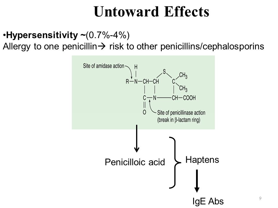 Untoward Effects Hypersensitivity ~(0.7%-4%)