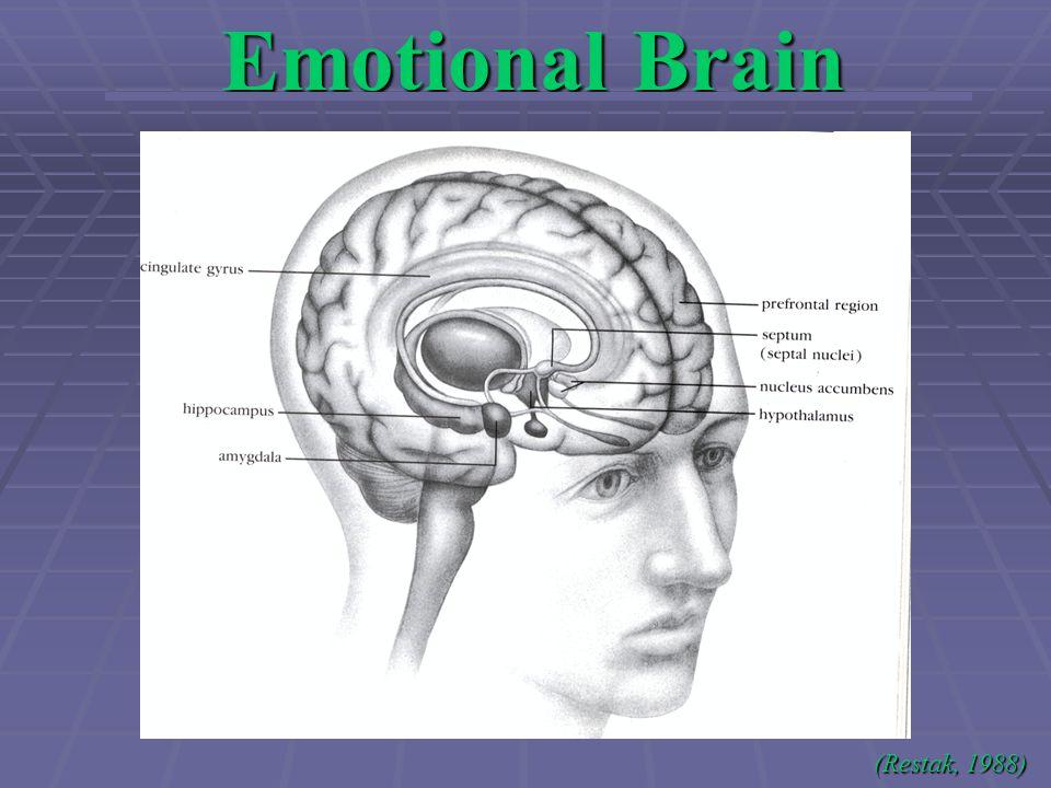 Emotional Brain (Restak, 1988)