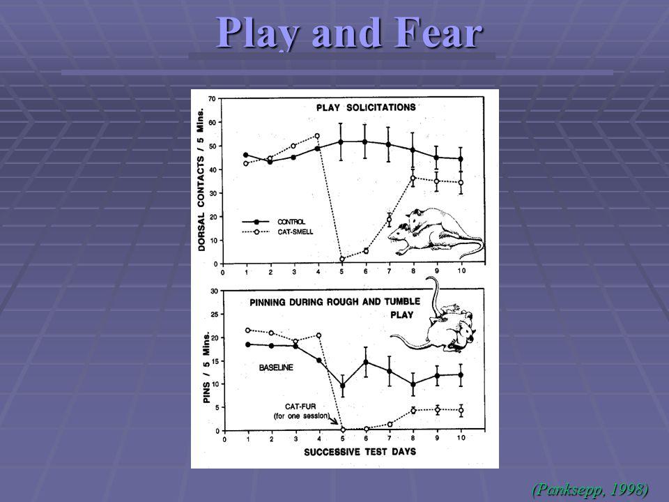 Play and Fear (Panksepp, 1998)