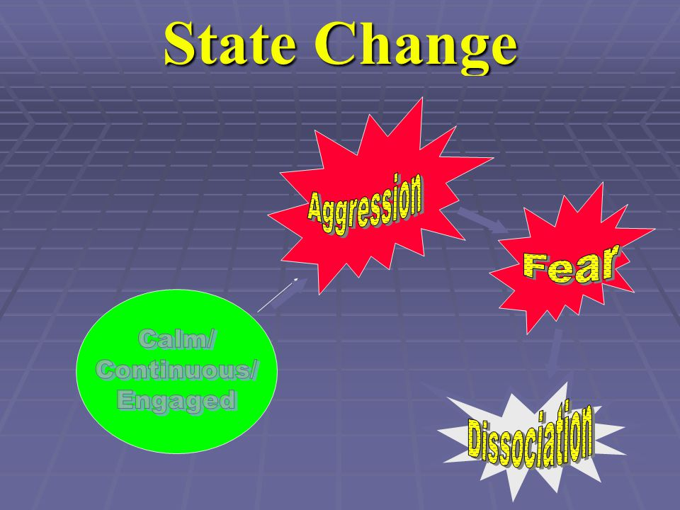 State Change Aggression Fear Calm/ Continuous/ Engaged