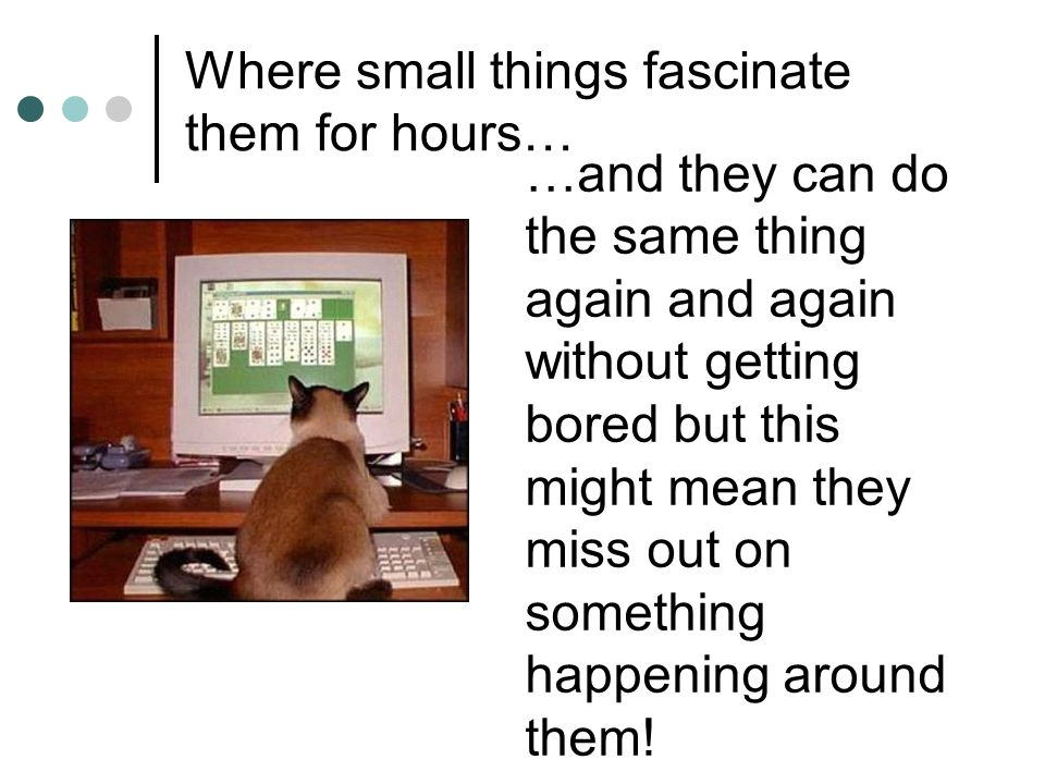 Where small things fascinate them for hours…