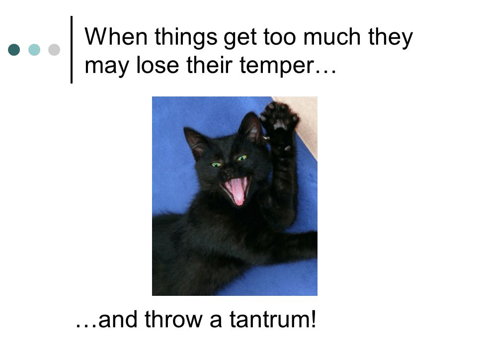 When things get too much they may lose their temper…