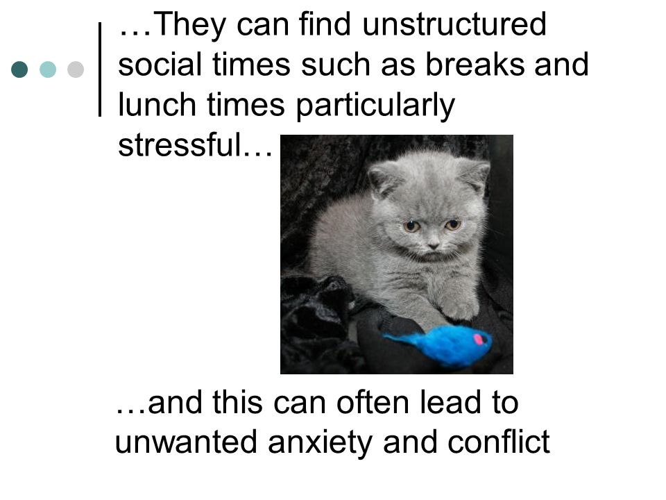 …They can find unstructured social times such as breaks and lunch times particularly stressful…