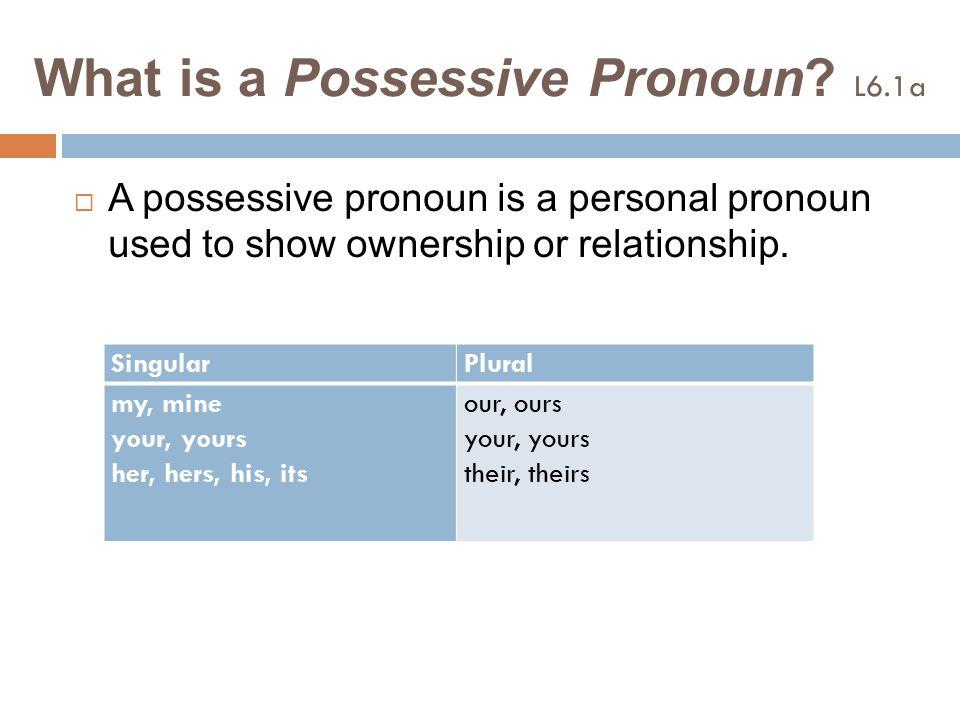 What is a Possessive Pronoun L6.1a
