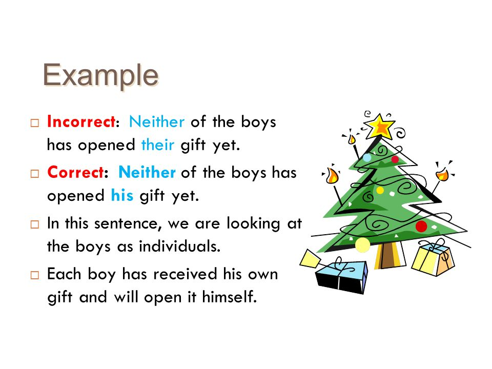 Example Incorrect: Neither of the boys has opened their gift yet.