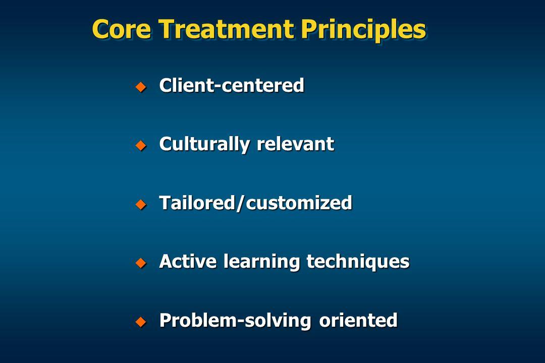 Core Treatment Principles