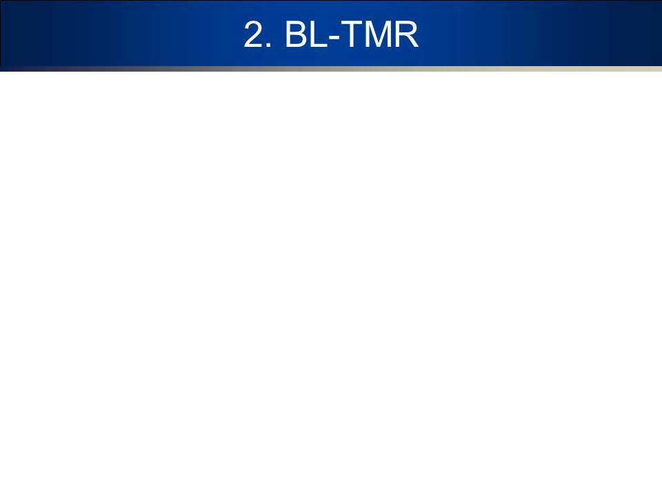2. BL-TMR