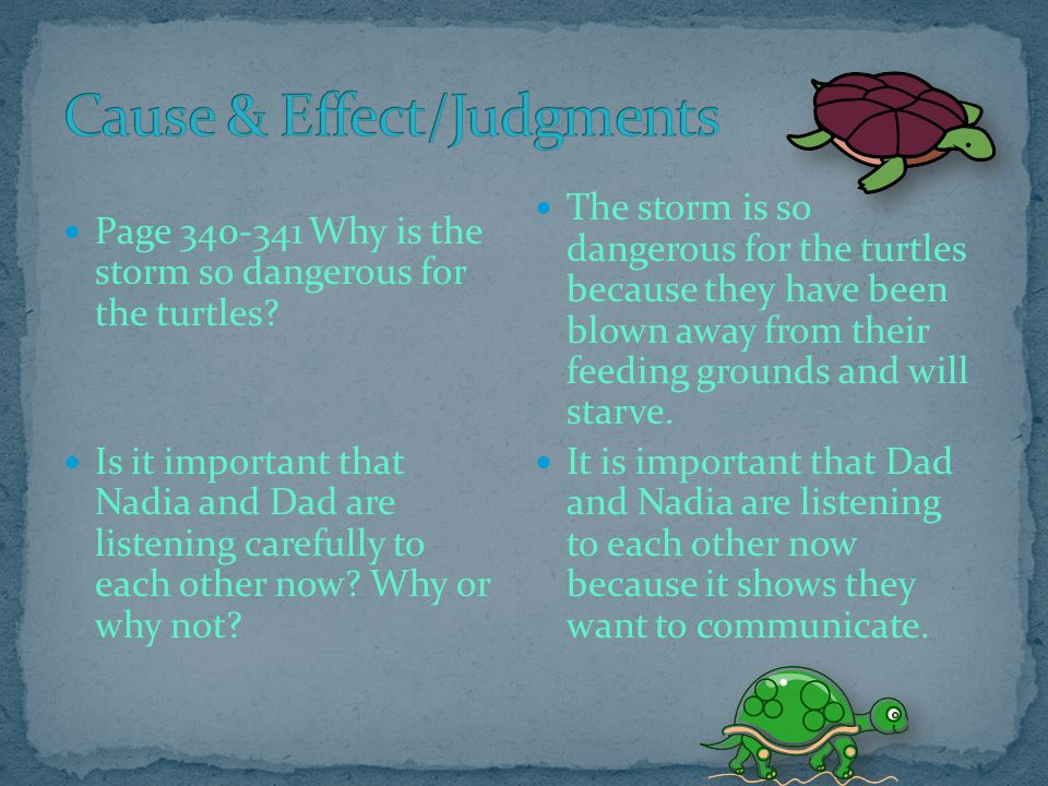 Cause & Effect/Judgments