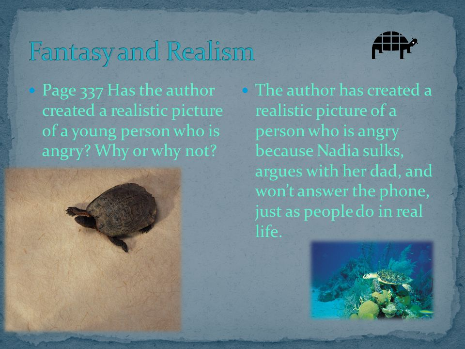 Fantasy and Realism Page 337 Has the author created a realistic picture of a young person who is angry Why or why not