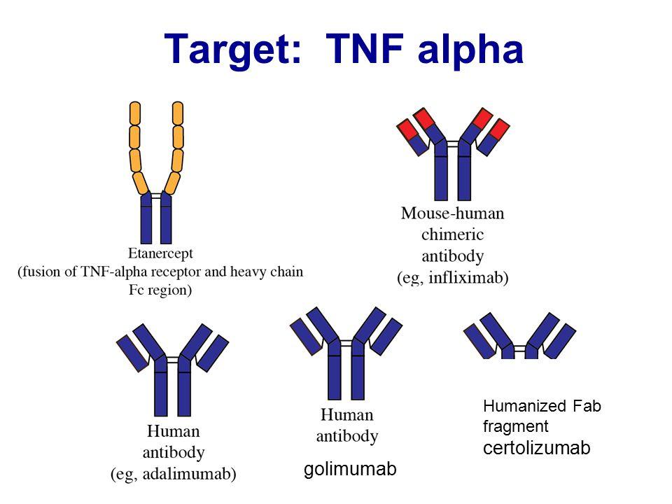 Target: TNF alpha Adalimumab: golimumab