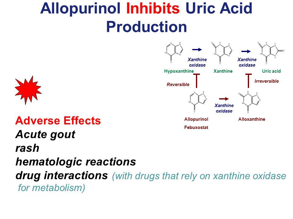 Allopurinol Inhibits Uric Acid Production
