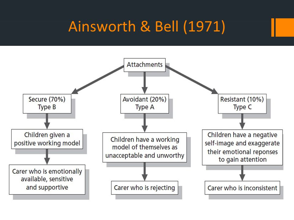 Ainsworth & Bell (1971)