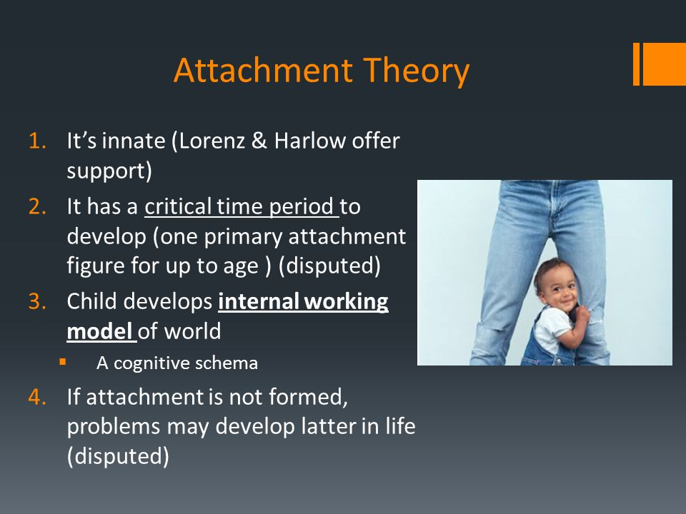 Attachment Theory It's innate (Lorenz & Harlow offer support)
