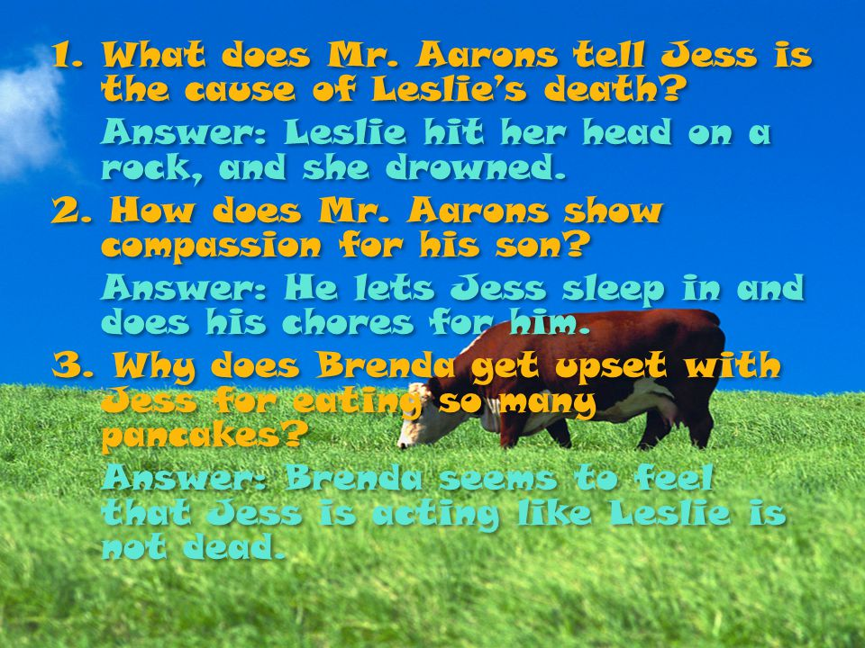 What does Mr. Aarons tell Jess is the cause of Leslie's death