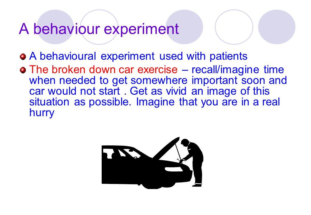 A behaviour experiment