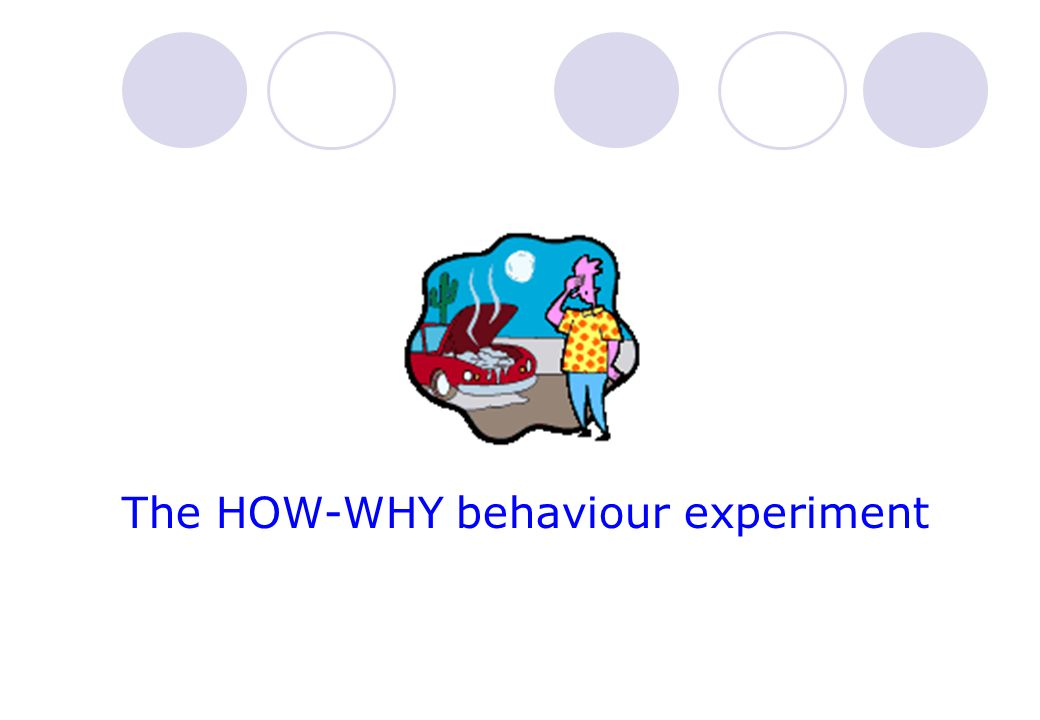 The HOW-WHY behaviour experiment