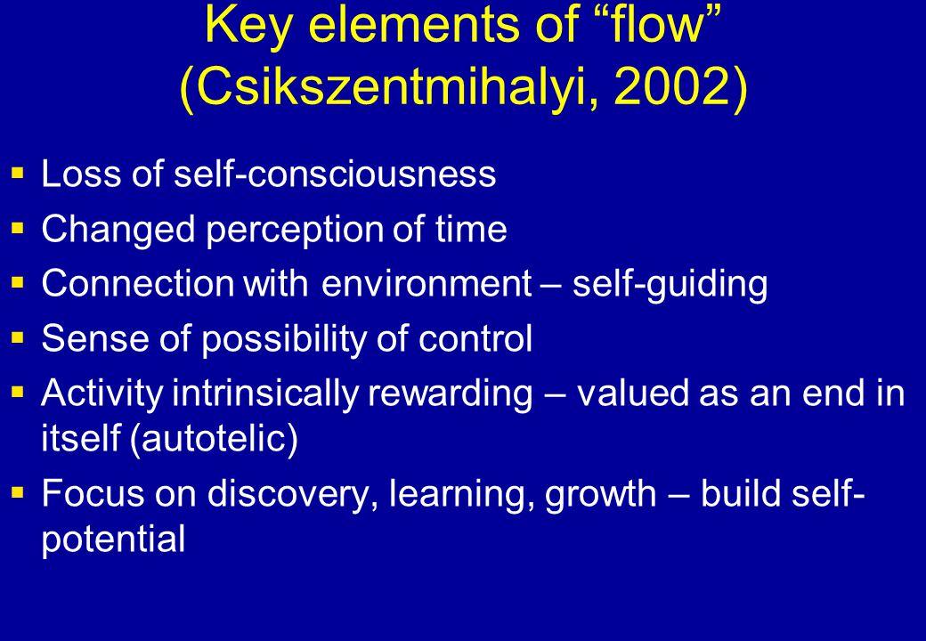 Key elements of flow (Csikszentmihalyi, 2002)
