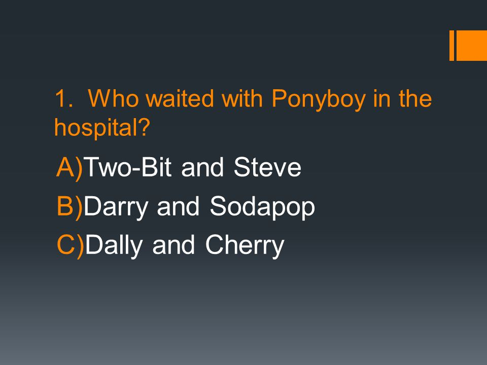 1. Who waited with Ponyboy in the hospital
