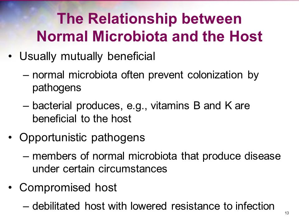 The Relationship between Normal Microbiota and the Host