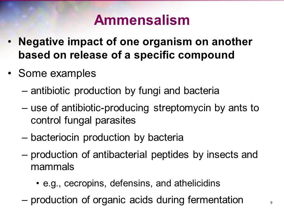 Ammensalism Negative impact of one organism on another based on release of a specific compound. Some examples.